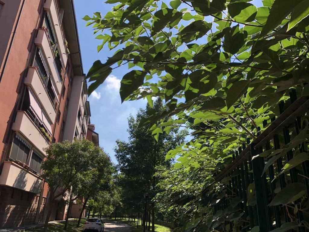 Appartamento-in-vendita-a-San-Giuliano-Milanese-26