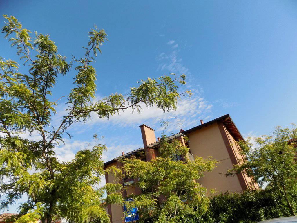 Appartamento-ultimo-piano-in-vendita-a-Busnago-in-Brianza-1