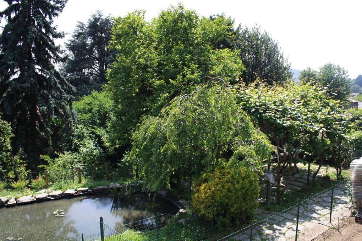 Residenza-d8217epoca-con-parco-in-vendita-a-Albese-con-Cassano-37