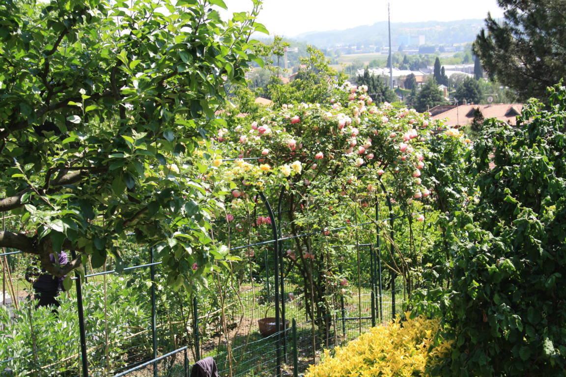 Residenza-d8217epoca-con-parco-in-vendita-a-Albese-con-Cassano-43