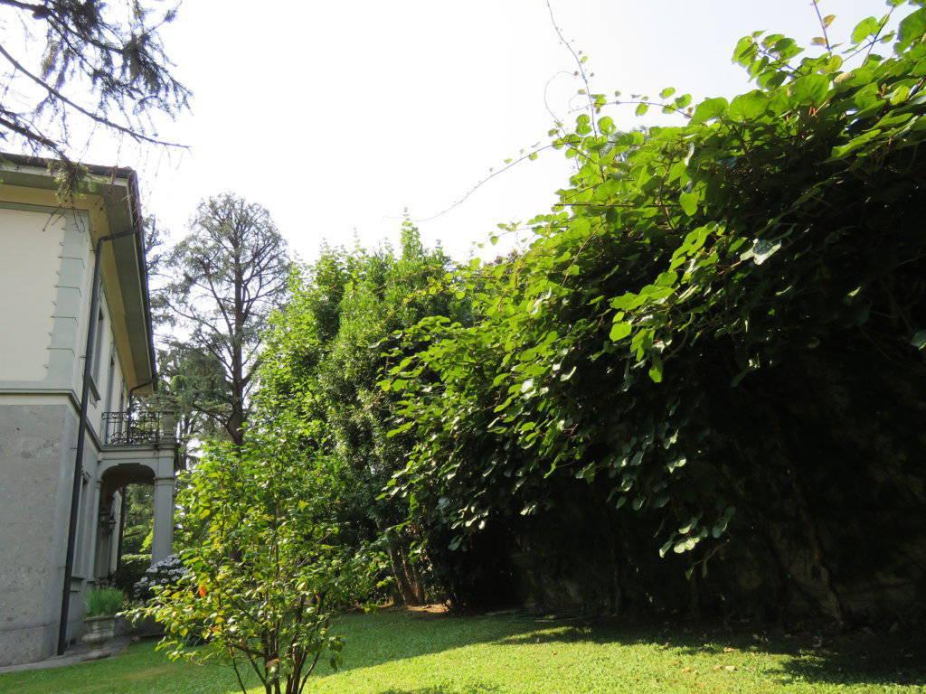 Villa-Epoca-di-pregio-in-vendita-a-Monza-34
