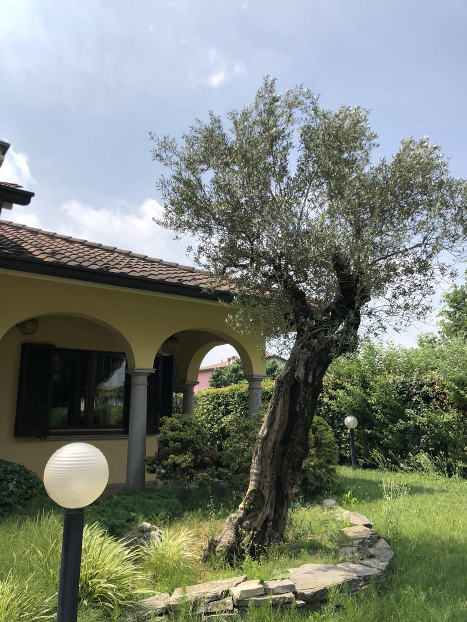 Villa-con-piscina-in-vendita-a-Mezzago-in-Brianza-11