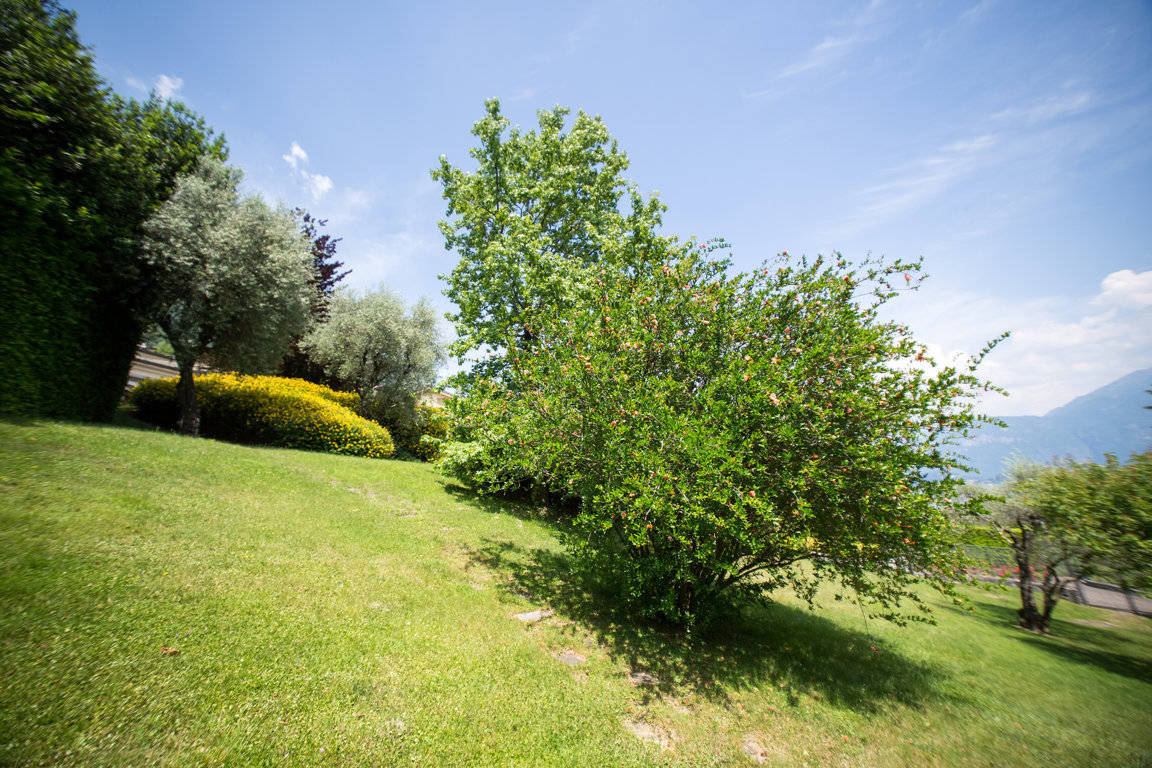 Villa-di-lusso-sul-Lago-di-Como-in-vendita-a-Mezzegra-24