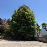Villa-in-vendita-a-Barzio-19