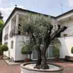 Villa in vendita a Fino Mornasco Como