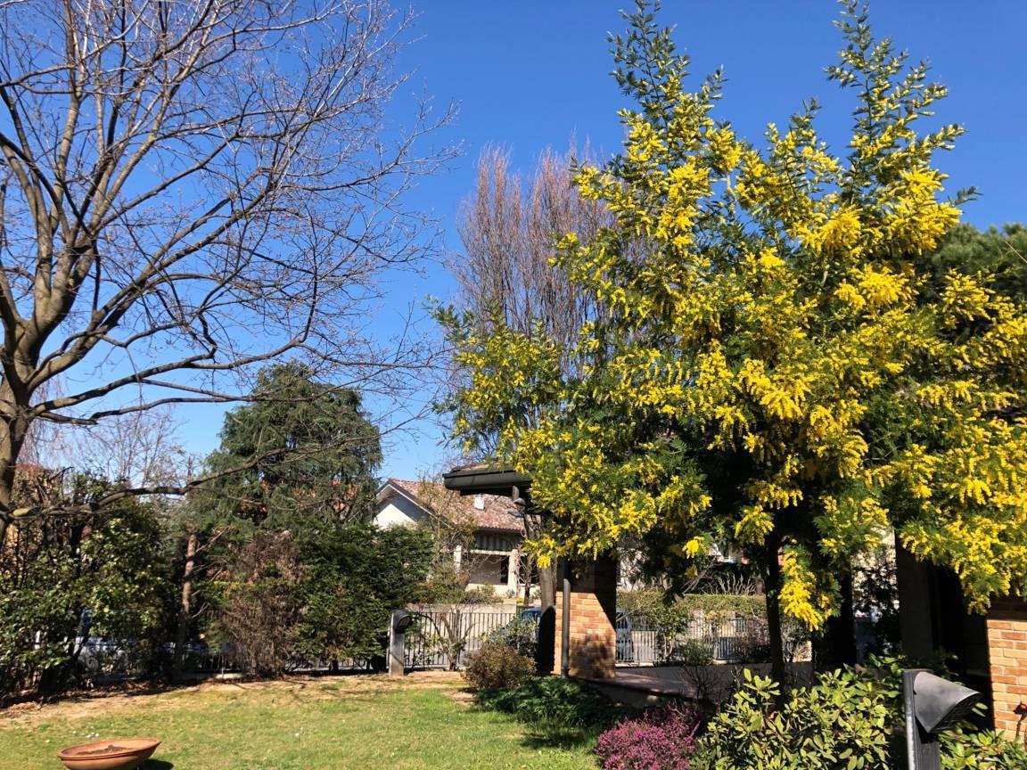 Villa-singola-con-grande-giardino-in-vendita-a-Bellusco-1