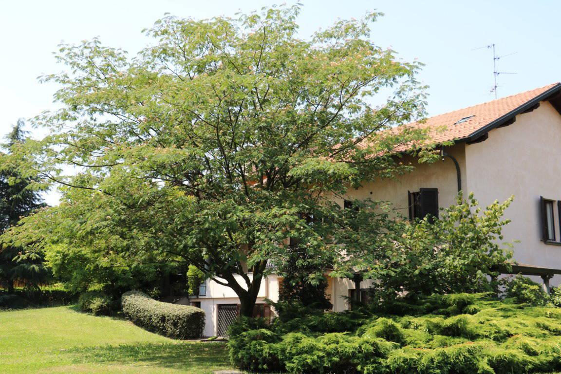 Villa-singola-signorile-in-vendita-a-Busnago-in-Brianza-20