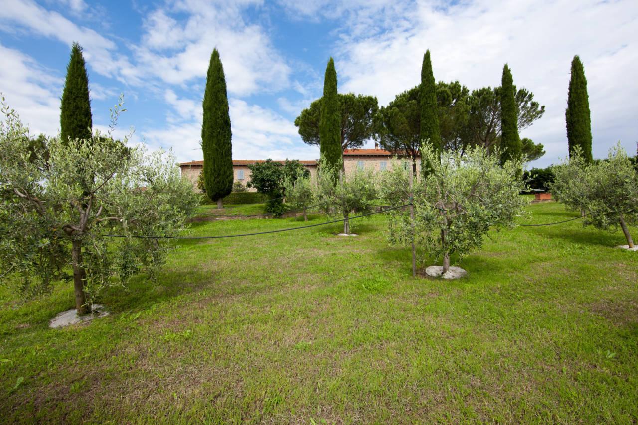 Casale in Toscana Val di Chiana in vendita (20)