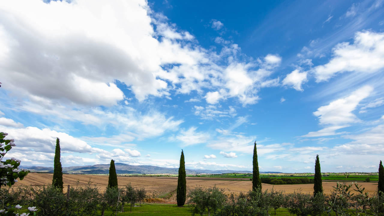 Casale in Toscana Val di Chiana in vendita (21)