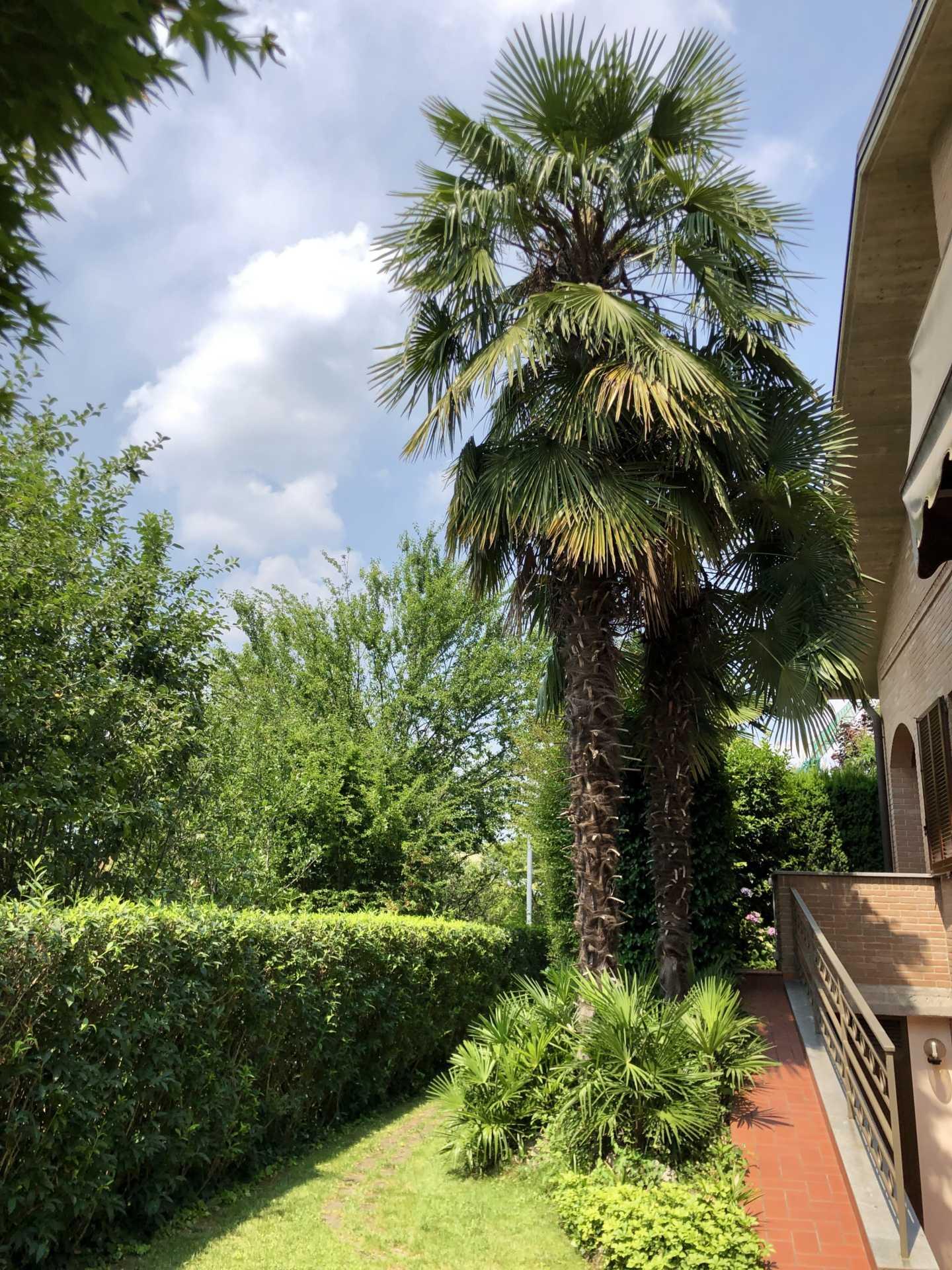 Villa-singola-in vendita-a-Bernareggio (11)