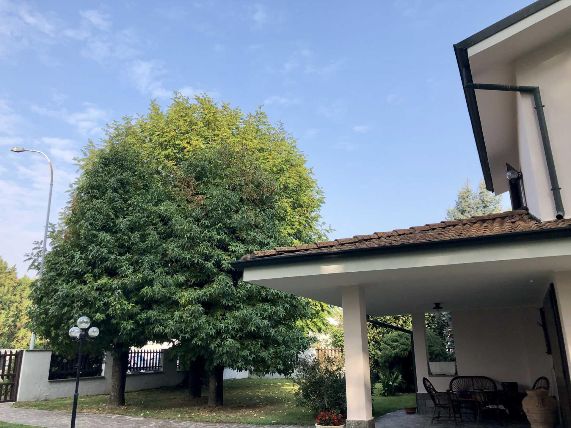 Villa-singola-in-vendita-a-Massalengo (17)