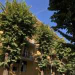 Vimercate-in-vendita-appartamento