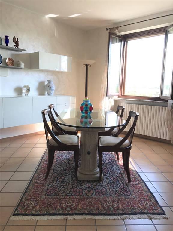 San-Giuliano-villa-in-vendita (6)