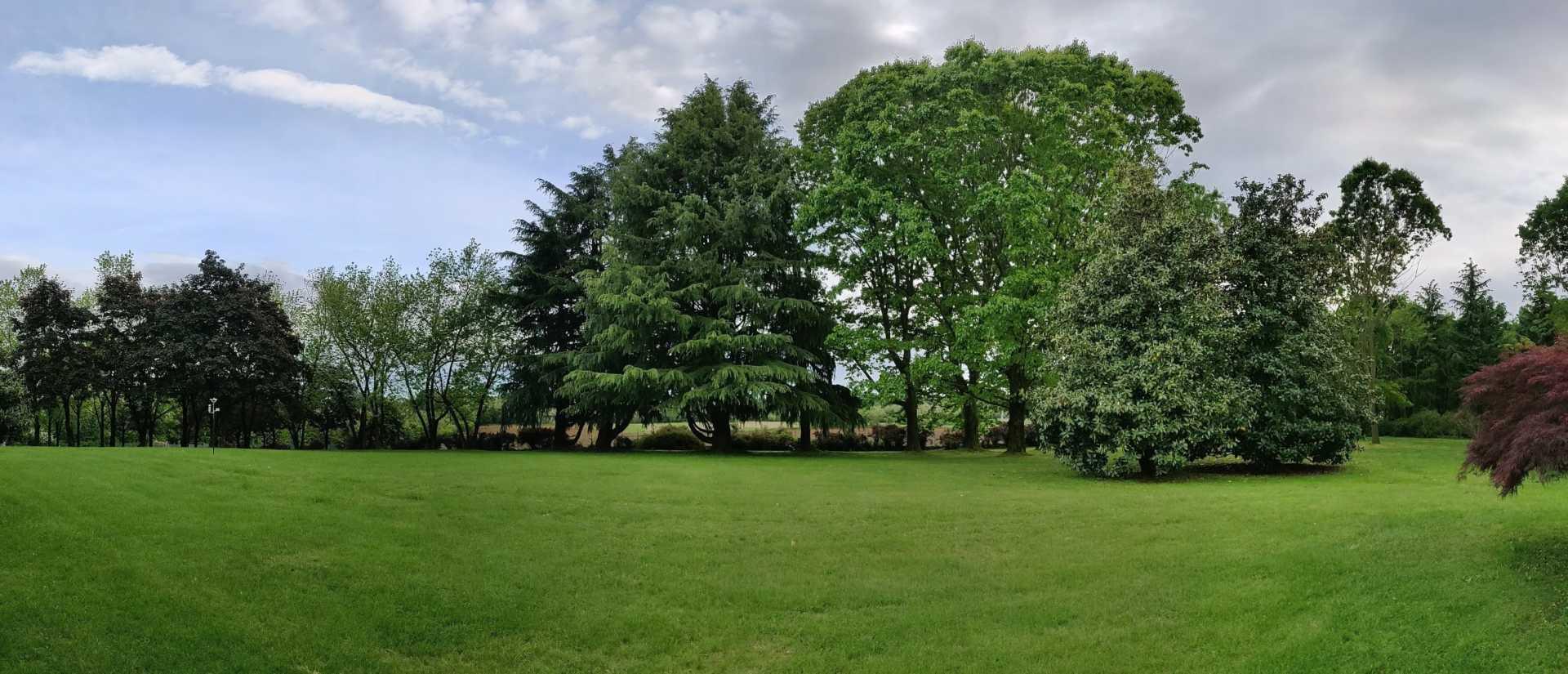 Casatenovo-villa-con-parco-in-vendita (50)