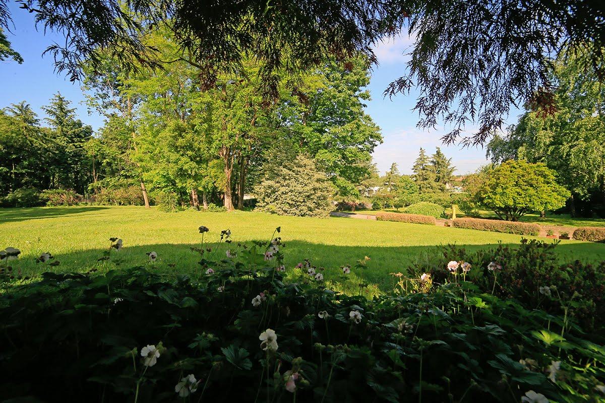 Casatenovo-villa-con-parco-in-vendita (8)