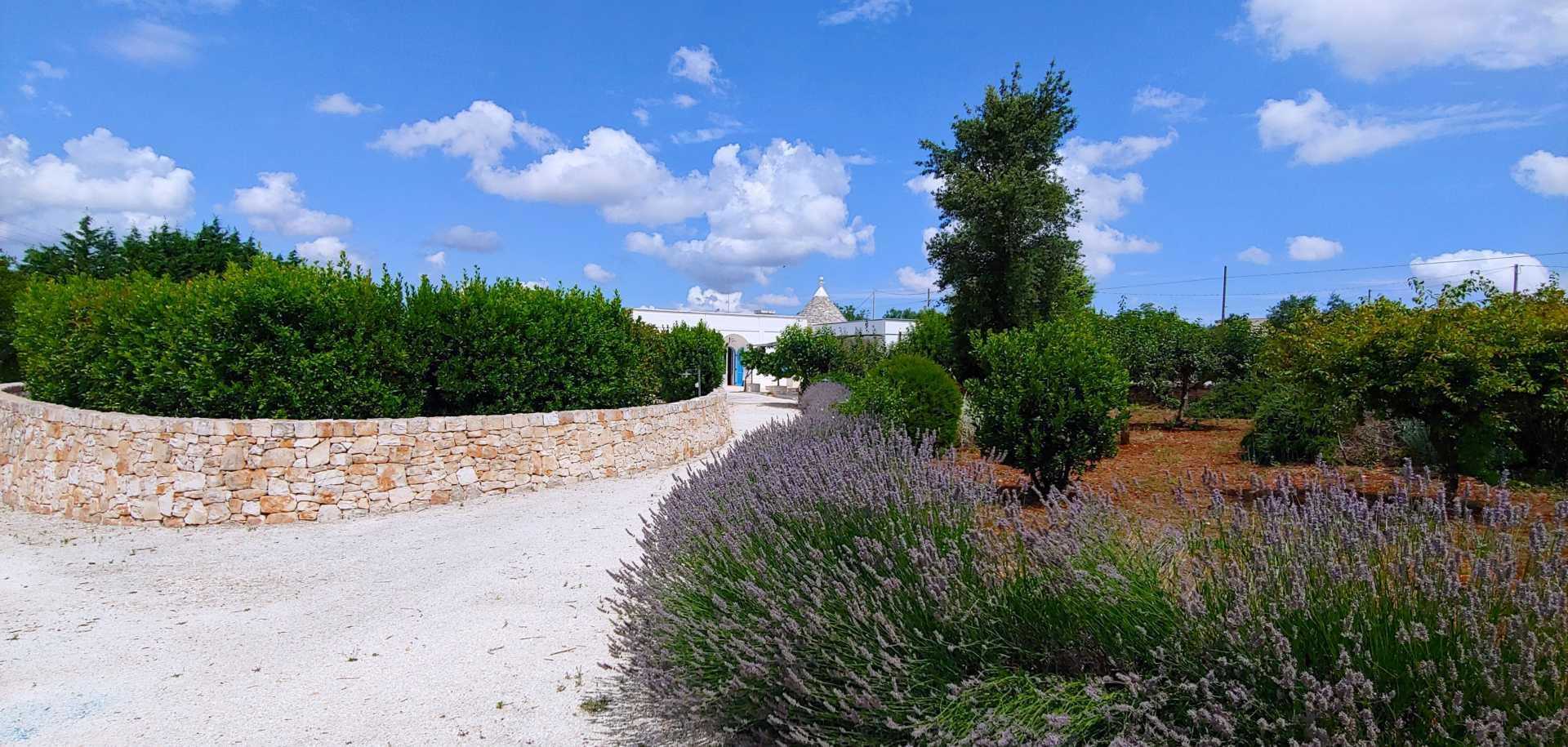 Puglia-vendita-Villa-con-Trullo-e-piscina (1)