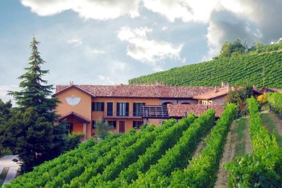 Azienda-vitivinicola-in-vendita-Asti
